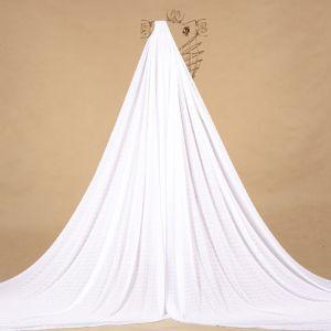 Tecido Chiffon Point Sprit Branco