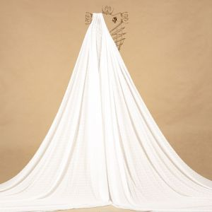 Tecido Chiffon Point Sprit Off White